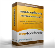 Picture of Single Version License - nopCommerce 4.00